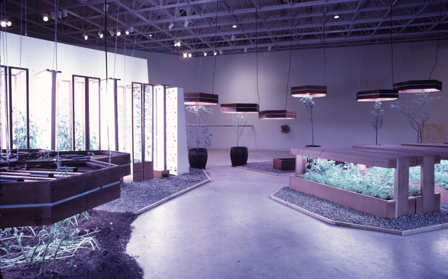 1970s CAMH Exhibitions Exhibition 10